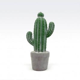 Adorno Cactus